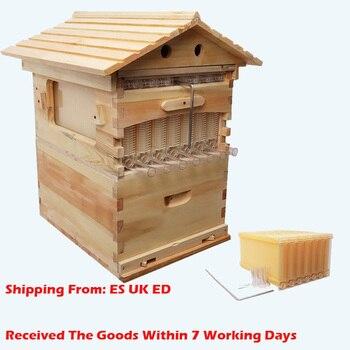Деревянный ящик для пчел, автоматическое оборудование для пчеловодства, пчеловодство, инструмент для пчеловодства, поставка пчеловодства, ...