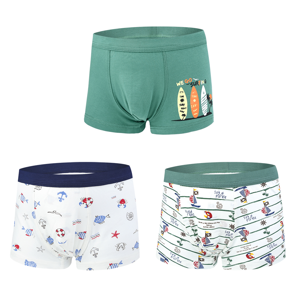 Image 5 - 6Pcs/lot Soft Organic Cotton Briefs For Boys Underwear Kids Boxer Short Childrens Underpant Teenager Clothes For 2 10Years OldUnderwear   -