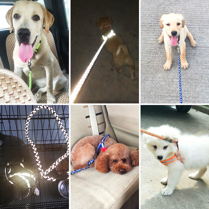 Dog Hand Holding Rope Chest Reflective Traction Dog Teddy Bichon Suspender Strap Universal Hand Holding Rope Dog Supplies Retrac