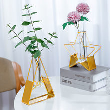 Nordic Creative Metal Hydroponic Test Tube Small Vase Decoration Living Room Dried Flowers Flower Arrangement Table Decoration