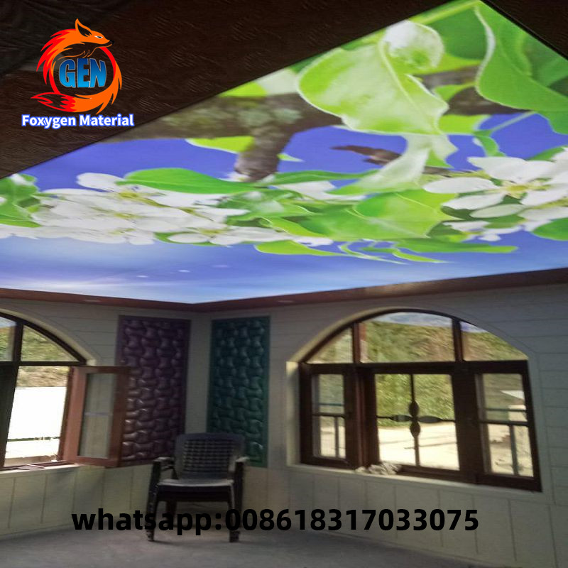 Well Sealing 3d Roof Ceiling Design Pvc False Ceiling Film Wallpapers Aliexpress