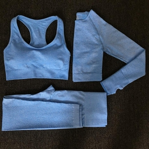 2020 Women Seamless yoga set Fitness Sports Suits GYM Cloth Yoga Long Sleeve Shirts High Waist Running Leggings Workout clothing(China)