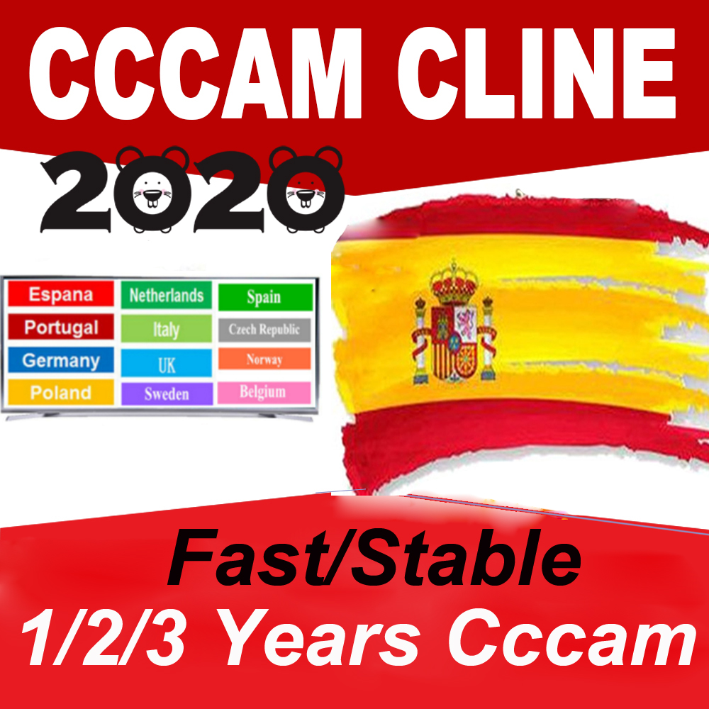 2020 Egygold CCcam Cline For 1/2 Year 7 Line Europe Satellite TV Receiver Ccam Italy Germany Oscam Mgcam Clines GTmedia V8 Nova