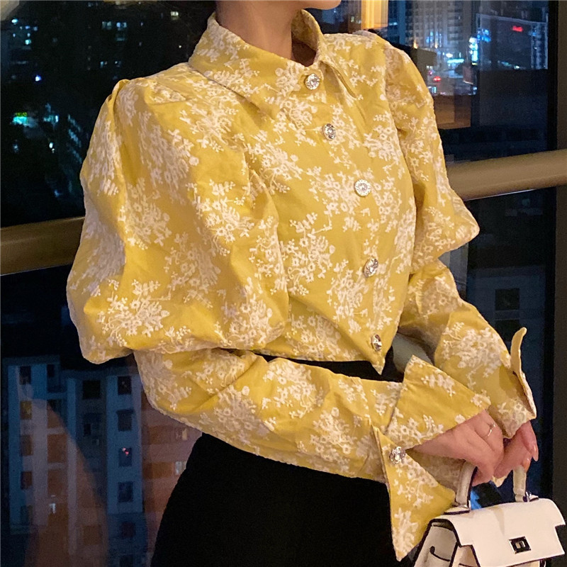 H670c48c972a34296b430c678fc69ef74k - Spring / Autumn Turn-Down Collar Puff Long Sleeves Embroidery Floral Blouse