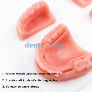 Image 3 - 4 pcs/ set Dental Oral/Gum suture training module silicone periodontitis suture model