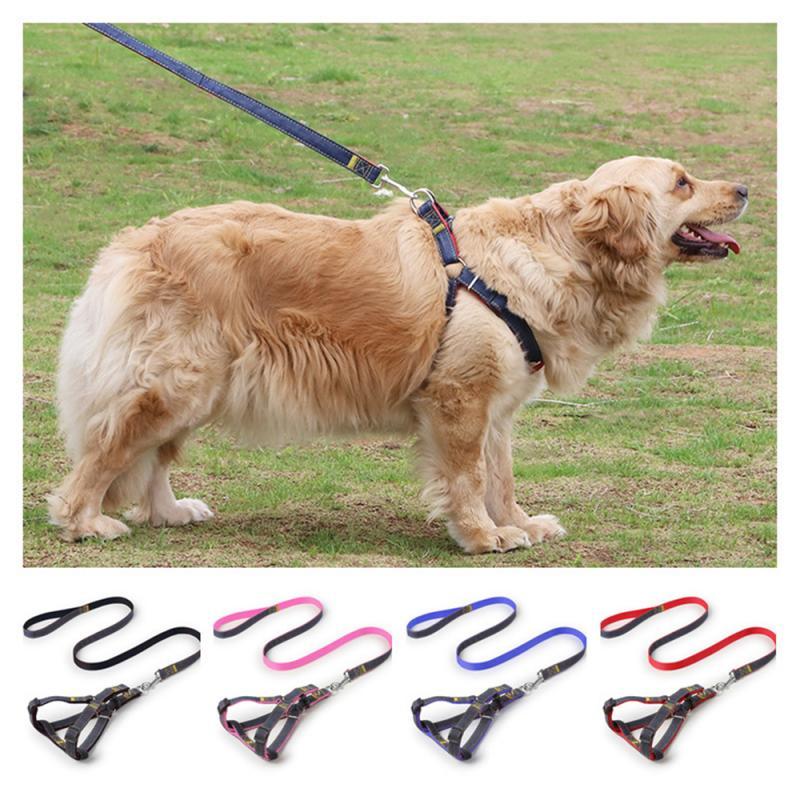 Laisse pour chiens Train de marche | Pour grands chats, petits animaux, laisses, chiens, laisse, corde en Nylon, ténacité, 4 couleurs, 4 tailles, fournitures pour animaux de compagnie