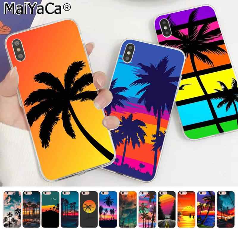 Maiyaca Beach Landscape Coconut Palm Trees After Colorful