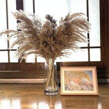 Pluma 30 40cm pampas grama buquê de casamento decoração de natal flor bando pampas grama cana naturais secas plantas
