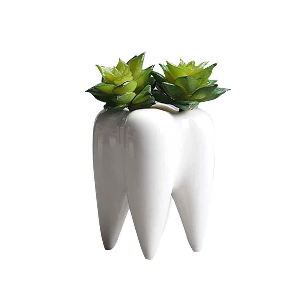 Teeth Shape Flowerpot Innovation White Ceramic Succulent Flower Pot Modern Design Home Decoration Does Not Include Plants