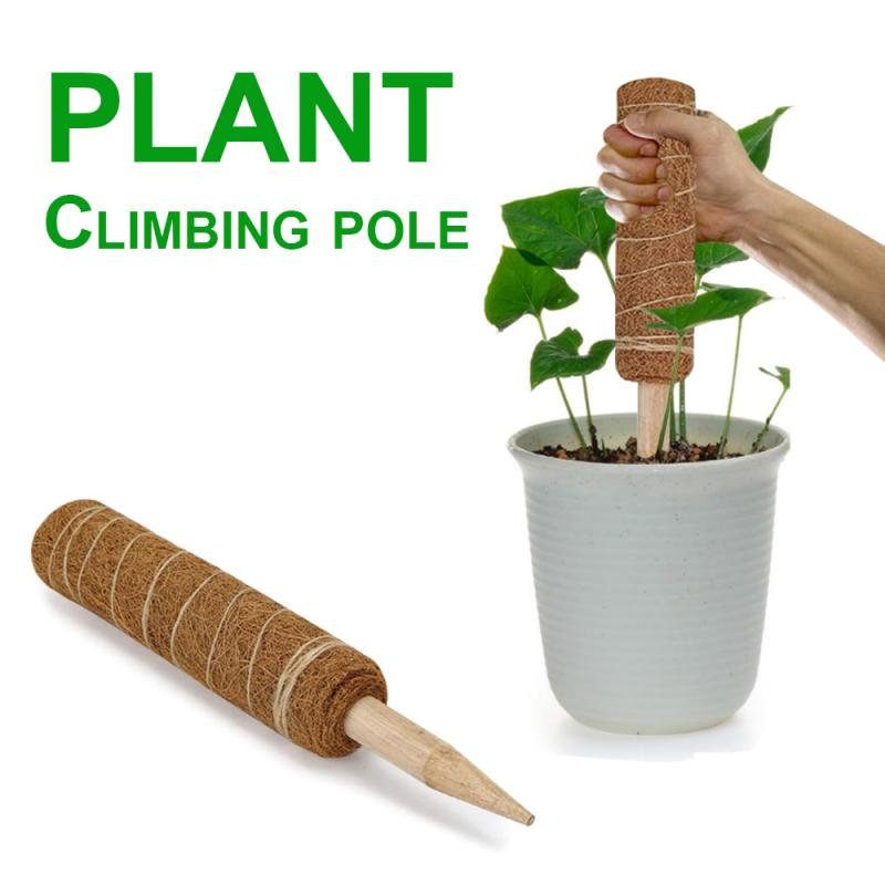 12 Inches Plant Climbing Pole Coir Moss Stick Coir Moss Palm Vines Stick Plant Support Extension Climbing Indoor Plants Creepers