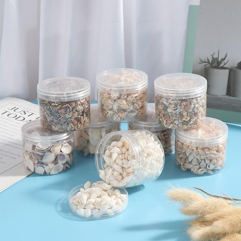 1 Box Natural Conch Shells Mini Conch Corn Screw Wall Deco DIY Aquarium Landscape Seashells Crafts party Decor Wedding supply