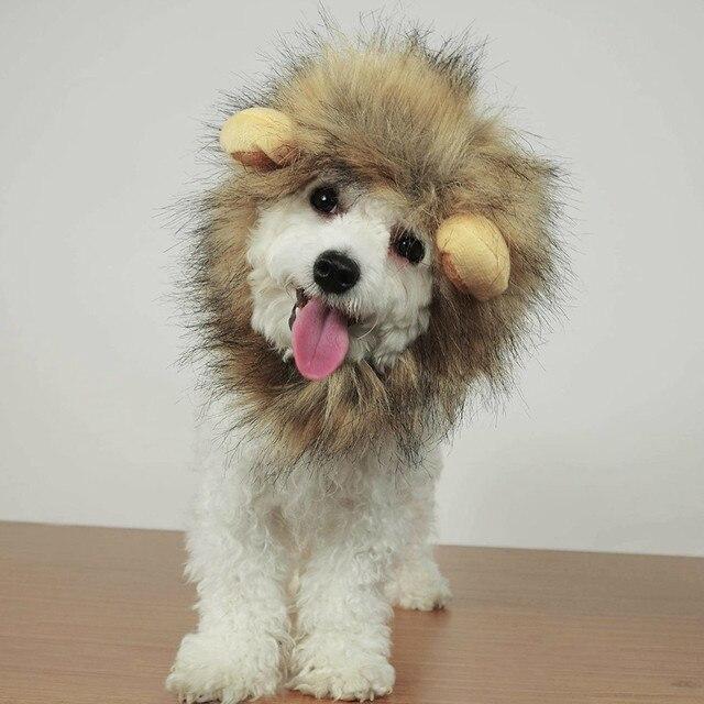 Kitten/Puppy Costume Lion Mane Wig  4