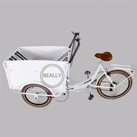 Heißer verkauf elektrische schwere ladung liefern fahrrad tragen pet bike