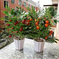 Home Decor Fruit Orange Cherry Tree Emulate Bonsai Simulation Decorative Artificial Flowers Fake Green Pot Plants Ornaments