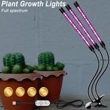USB Full Spectrum Grow Light lampada per piante a LED 5V lampada da interno a LED per interni piantine di fiori illuminazione per serra Phyto LED Light 5V