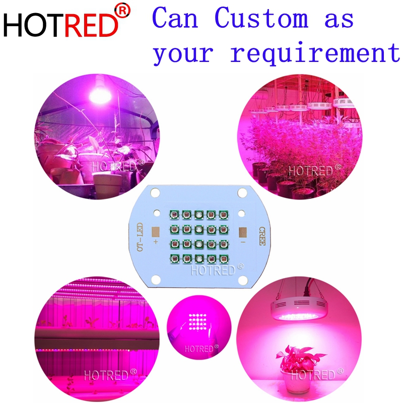 30W50W60W Plant Grow LED Light  Cree XPE Led Emitter Light 660nm Red 450NM Royal Blue For  Indoor Garden Fruit Growing Seeding
