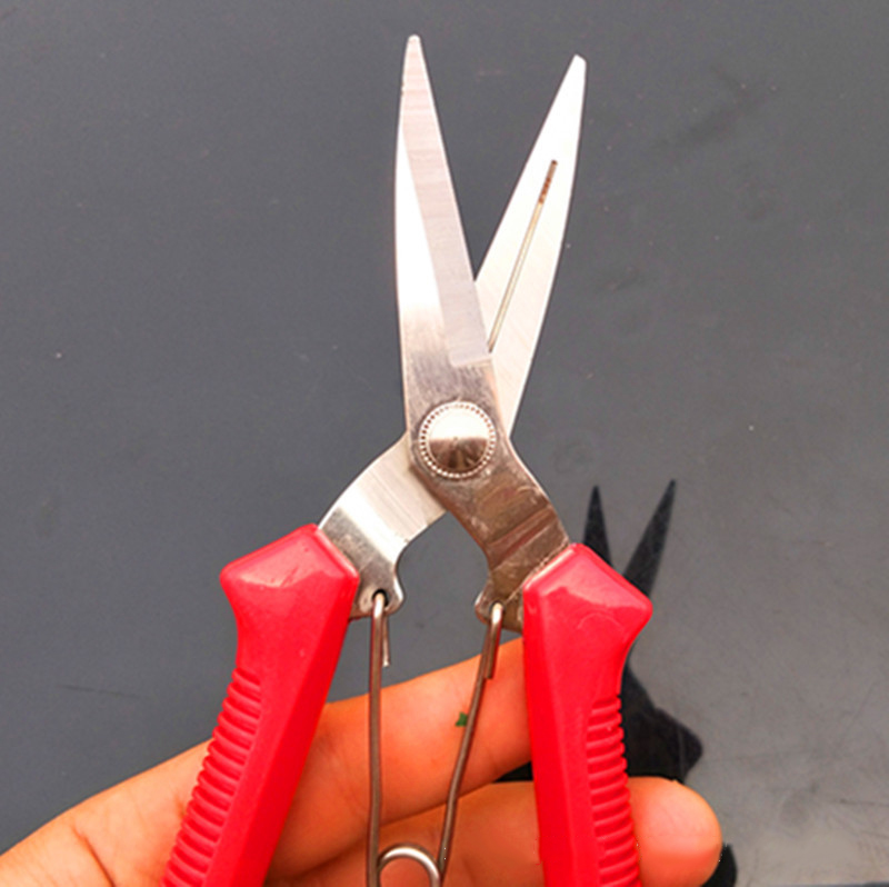 Garden Pruning Picking Fruit Shear High Carbon Steel Scissors Grafting Bonsai Tool Fruit Tree Flowers Branch Pruner Tools