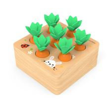 Kids Montessori Toys Block Set Alpinia Shape Matching Toys For Children Baby Wooden Size Cognition Carrot Game Early Education(China)