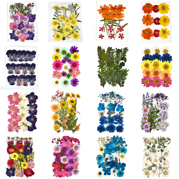 DIY Dried Flowers Resin Mold Fillings UV Expoxy Flower for Nail Art Pressed Home Decor Handicraft