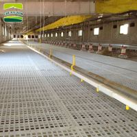 10 sets Sample Factory hot sale floor tile plastic floor mat hen house plastic chicken house floor Poultry floor plastic slat