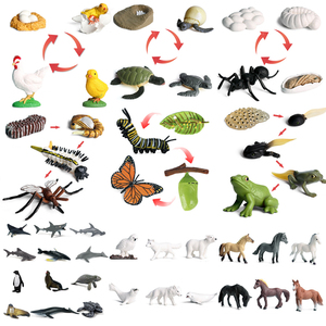 2020 Simulation Insect Animal Model Figures Mini Butterfly Frog Mosquito Ocean Whale Animal Poultry PVC Figures Dolsl Toys Gift
