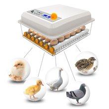 Инкубатор для птиц профессиональный автоматический инкубатор