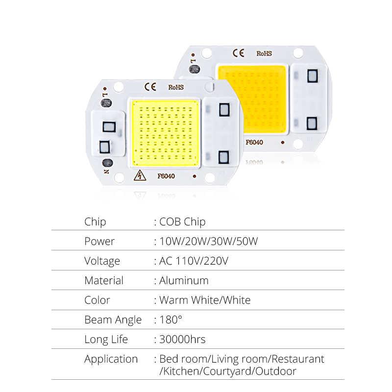 LED COB puce lampe à lumière d'inondation AC220V SMD 20W 30W 50W blanc/blanc chaud avec Smart IC haute puissance bricolage projecteur extérieur projecteur