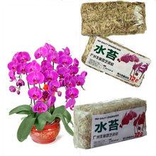 Natural Dried SPHAGAUM MOSS Garden Supplies Moisturizing Nutrition Organic Fertilizer Phalaenopsis Orchid Flowerpot Decoration
