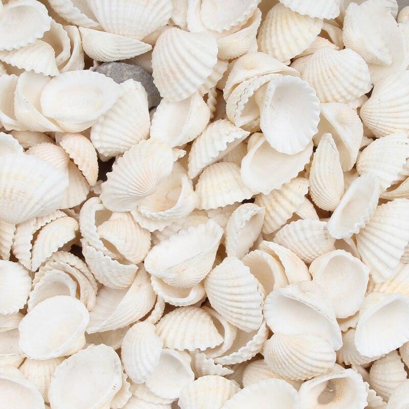 30 шт., пляжный декор из морских ракушек, для поделок, в морском стиле, 20-30 мм