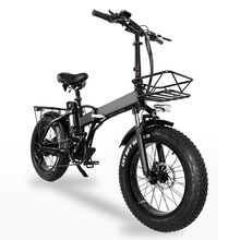 GW20 750W 20 Inch Electric Folding Bike, 4.0 Fat Tire, 48V Powerful Lithium Battery, Snow Bike, Power Assist Bicycle