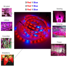 цена на DC12V 5M Phyto Lamps Full Spectrum LED Strip Light 300 LEDs 5050 Chip LED Fitolampy Grow Lights For Greenhouse Hydroponic plant