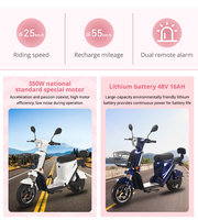 BENOD Electric Scooter Biker Electric Motor High-Speed High-Endurance Lithium Battery Electric Motorcycle Scooter Motor Moped 2