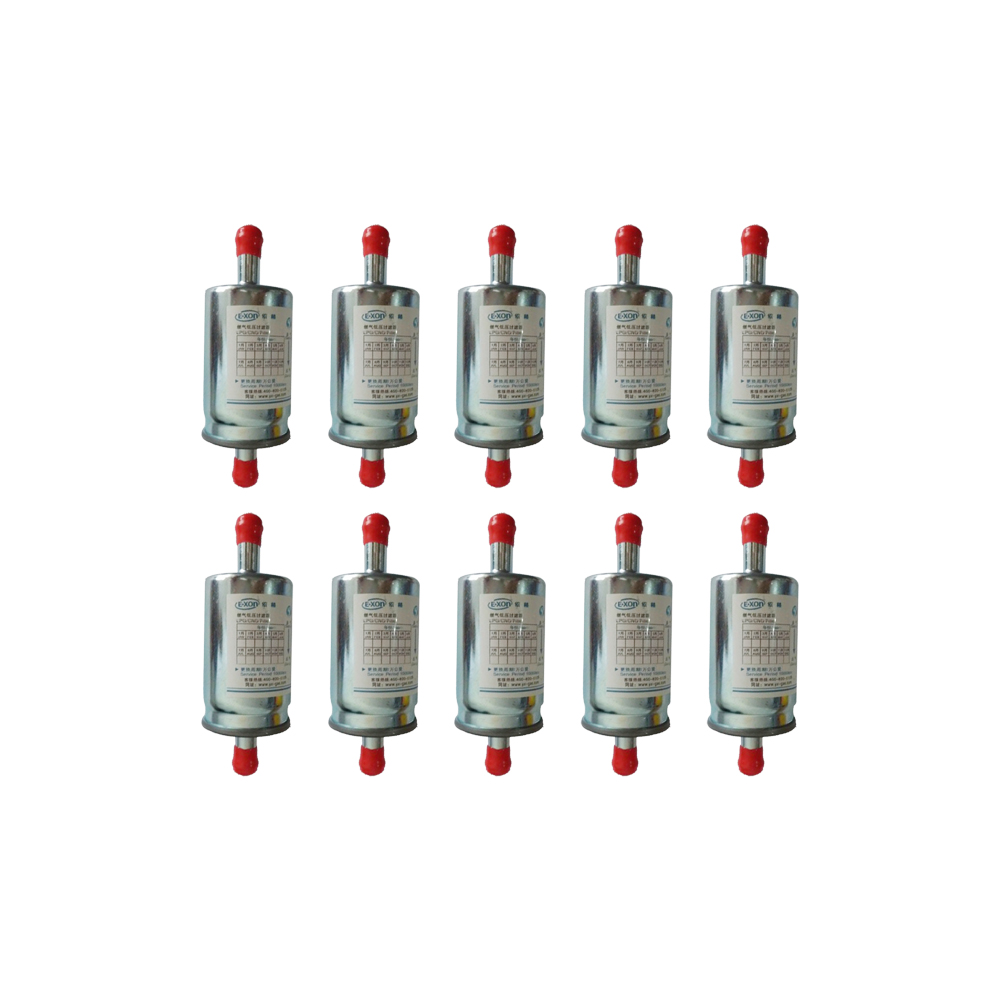 Imported Quality 10 Pcs LPG CNG Gas Filter For Gas Car 12mm High Quality