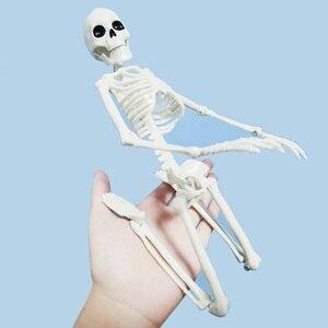 Image 1 - 5 Pcs Menselijk Anatomie Skelet Skelet Model Medische Geneeskunde Leermiddel Anatomie 1 Paar Schedel Skelet Hand Bone Halloween