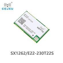 E22 230T22S SX1262 TCXO UART โมดูลไร้สาย 220 236MHz 230 MHz IOT SMD IPEX อินเทอร์เฟซ