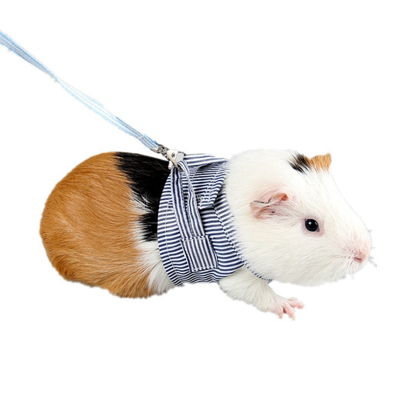 Small Pet Outdoor Walking Harness Vest Leash Set For Rabbit Ferret Guinea Pig Bunny Hamster