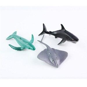 12 teile/los Marine Tier Action-figuren 6CM PVC Figure Sammeln Spielzeug Anime Figur Figuren Kinder Spielzeug