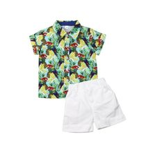 2020 Baby Summer Clothing Infant Boys Baby Kids Parrot Print Tops Short Sleeve Shirts Shorts Pants 2Pcs Set Outfits Clothes 1-6Y 1 2 3 4 year boys clothes 2018 new cotton casual kids outfits star shirts stripe pants 2pcs baby children clothing set