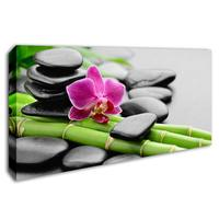 Zen Canvas Wall Art Store Bamboo Poster Natural Landscape Painting Waterfall Wall Picture for Living Room Home Decorative 50x100