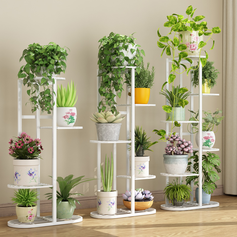 Indoor Special Price Domestic Balcony Shelf Iron Living Room Provincial Space Flower Pot Floor Type Green Pineapple