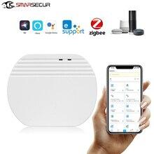 Ewelink ZigBee Gateway Hub Smart Home Device Support add APP Gateway Smart Light Control , Work With For Google Alexa Siri