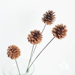 5 sztuk suszonych szyszka kwiaty bukiety naturalnie szyszka bukiety czysta szyszka bukiety