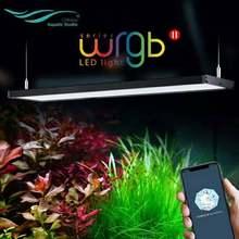 Chihiros – éclairage de plante aquatique pour Aquarium avec application Bluetooth intégrée, 2 niveaux de luminosité RGB, mise à niveau WRGB II
