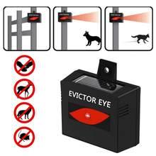 Gato eletrônico ultra-sônico anti mosquito inseto repelente rato de rato repelente ultras movido a energia solar animal para gatos raposas guaxinins