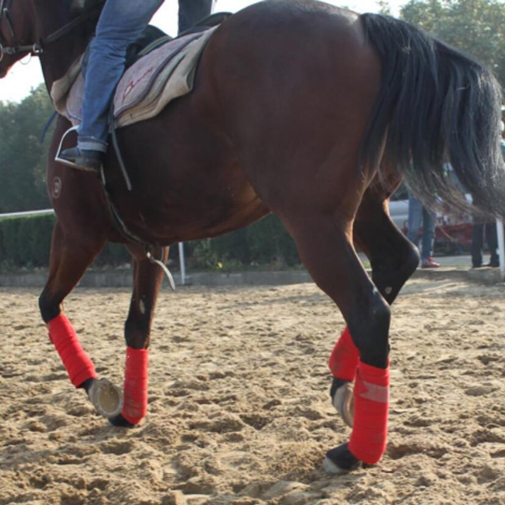 4 шт. Прочные мягкие флисовые конные повязки для ног для верховой езды, Гоночное оборудование для лошади