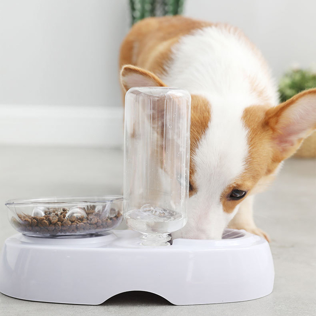 Dual Port Pets Automatic Water and Food Dispenser Feeder  My Pet World Store