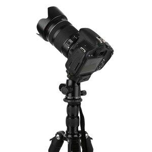 Image 5 - Zomei Q222/Q555/Q666/Q666Cプロのカメラの三脚旅行ポータブル調節可能な三脚キヤノンミラー/デジタルカメラ