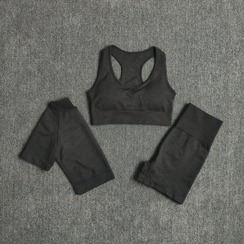 Seamless Women Yoga Set Gym Clothes Sports Bra Fitness Crop Top Short Sleeve Shirt High Waist Shorts Sports Suits Athletic Wear