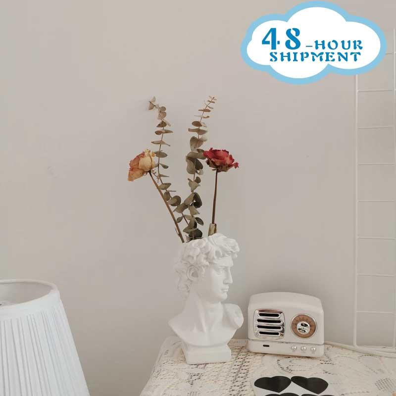 W & G מודרני נורדי סגנון Creative דיוקן אגרטל אדם ראש פרח אגרטלים דקורטיבי קישוטי שרף דוד בית פרחי אמנות דקור