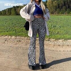 HEYounGIRL Zebra Print High Waisted Long Trousers Ladies Vintage Fashion Skinny Flare Pants Women Streetwear Summer Sweatpants